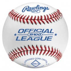 Rawlings R100 Michigan (MHSAA) Official High School Baseball